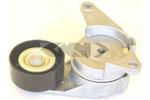 Napinacz paska klinowego wielorowkowego SPIDAN 69460 SPIDAN 69460