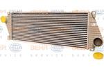 Chłodnica powietrza doładowującego - intercooler HELLA 8ML 376 720-391 HELLA 8ML376720-391