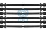 Zestaw śrub głowicy cylindrów RUVILLE  305452S2