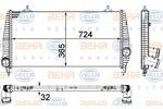 Chłodnica powietrza doładowującego - intercooler BEHR HELLA SERVICE 8ML 376 756-751 BEHR HELLA SERVICE 8ML376756-751