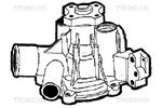 Pompa wody TRISCAN  8600 65918