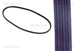 Pasek klinowy TRISCAN 8640 130900 TRISCAN 8640130900