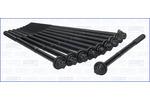 Zestaw śrub głowicy cylindrów AJUSA 81020100