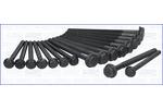 Zestaw śrub głowicy cylindrów AJUSA 81043800 AJUSA 81043800