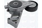 Napinacz paska klinowego wielorowkowego IPD 10-0081 IPD 10-0081